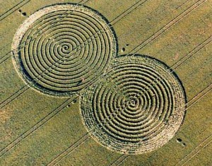 Nazca Monkey Tail Crop Pattern